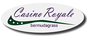 Proseeds Casino Royale Bermudagrass title=