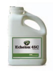 Echelon 4SC (gal) - AGENCY title=